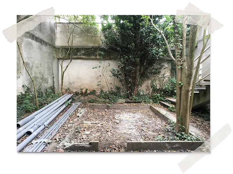 jardin en friche avant travaux